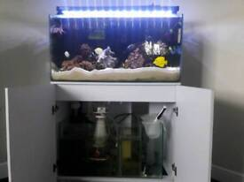 Aqua Marine tank
