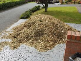 Free wood bark chippings