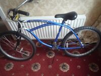 In excellent condition Mountain Bike