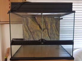 Reptile exo viv and light canopy