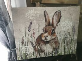 Rabbit / Hare canvas pictures wallart