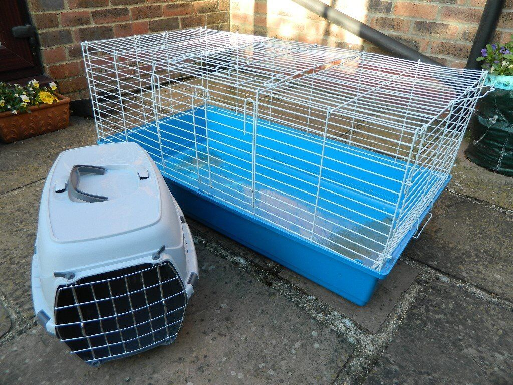 Guinea Pig Cage For Indoor Use with Small Animal Carrier   in ...