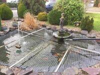 Carp Pond, Filters, Pumps, Ornimates, Pond Vacume and loads more