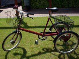Tricycle Adult Pashley. Collectors square frame edition, rare original refurbishment pearlescent fin