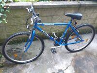 """Trek bike 26""""wheels"""