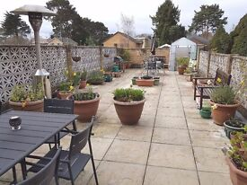 Double room to rent in large 3 bedroom maisonette with terrace
