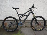 Specialized enduro mountain bike large
