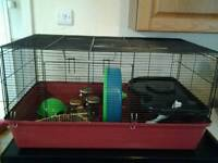 Extra large hamster cage (Alaska)