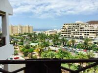 Holiday in the sun / Tenerife