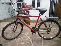 City bike with pannier, mudguards, rear light