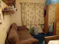 Large double room in friendly house