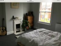 Huge room available in Bury St Edmunds