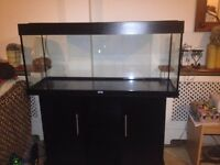 Juwel Rio 240 Aquarium with light hood and cabinet stand Excellent less than a year old from new