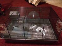 Large dwarf Hamster cage