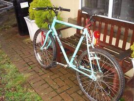 mountain bike adults raleigh multi terrain