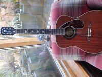 guitar tim armstrong hellcat semi acoustic