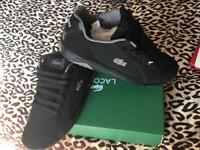 Lacoste deviation size 7 brand new