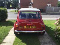 Classic Mini Cooper 12.75