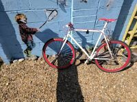 'White & Red Single Speed Road Bike'