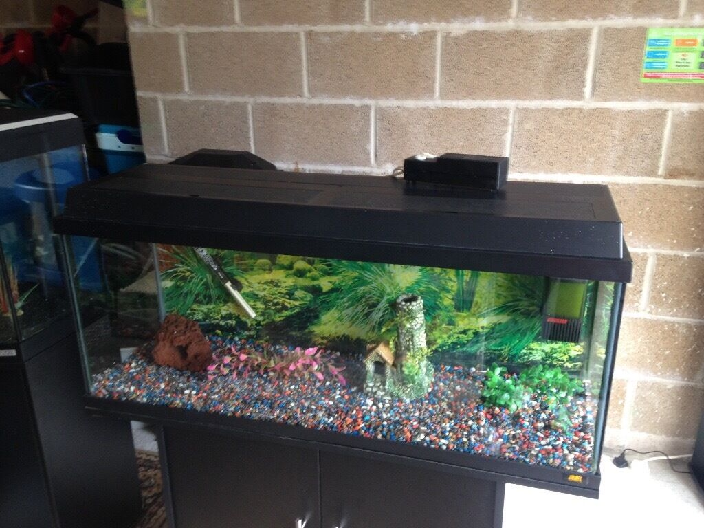 Juwel aqua clean aquarium fish tank gravel - 3 5 Ft Juwel Fish Tank Full Set Up With Stand Light Heater Filter Gravel Ornament All