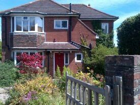 Large double room with en suite shower room in Eastbourne