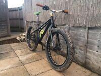 Fat bike on one