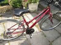 Ladies Mountain Bike Priced To Sell