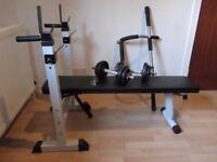 Folding Physionics Weight Bench/Door Gym/Dumbells