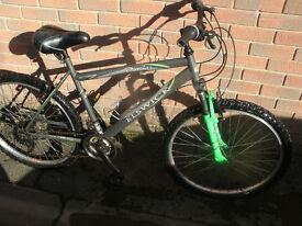 Elswick Premier Mountain Bike
