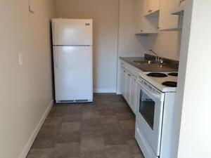 RECENTLY UPDATED 2 BD IN CENTRAL LOCATION! 321- 67 Notch Hill Rd Kingston Kingston Area image 4