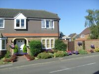 GARDENER & HANDYMAN - Steve's Gardening & Handyman Services - FULLY INSURED