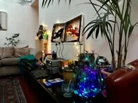 One month sublet in bright, happy warehouse April-May no deposit, all inclusive