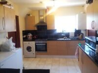 Stunning Large Ensuite- Double Bed Room available for immediate move / Kingsbury- £650 / Month.