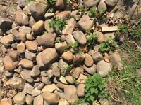 Garden pebbles - Approx 75 Kg