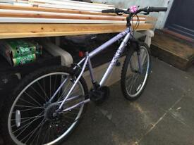"Girls bike 17"" frame"