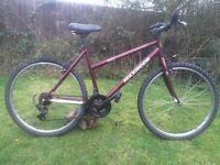"""Rockrider 5.0 ladies 19"""" mountain town bike bicycle"""