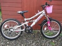 """Girls APOLLO 20"""" Bike Silver and Pink, Basket and Stand and gears"""