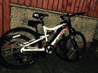 "Mens 17"" mountain bike"