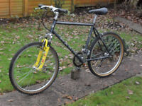 Vintage - Marin - Bear Valley Special Edition, Classic Mountain Bike.