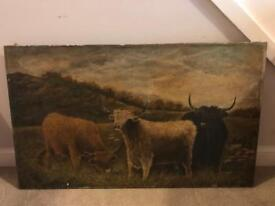 Antique Highland Cattle Painting