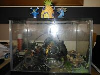 Fish Tank plus Filter and Ornaments
