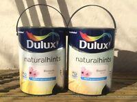 Dulex paint
