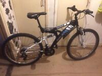 Raleigh pushbike