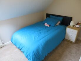 Furnished double in great house in leafy area of Iffley