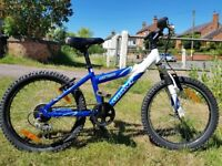 """Giant MTX200 Kid's / Boy's mountain bike - 20"""" wheel 12"""" frame, 5 gears."""