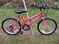 Girls Mountain Bike 20in Wheel 12in Frame 6 Gears In Excellent Condition