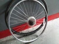 Bike back wheel