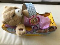 Cozy Dozys Cubbles The Bear (Little Live Pets)