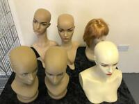 6 Manequin's