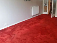 Thick pile red carpet 5.7 x 3.7m approx - used